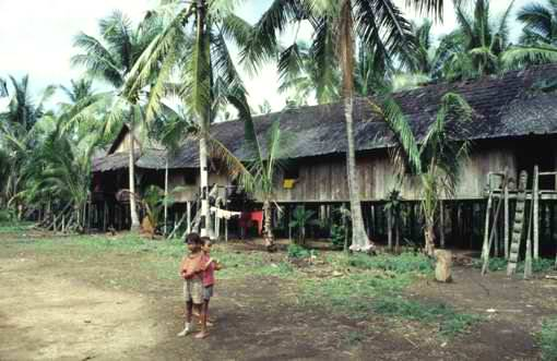 East Kalimantan longhouse