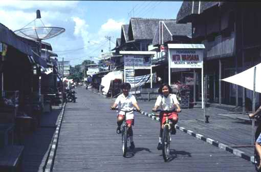 Ironwood (kayu ulin) paving in Muara Muntai