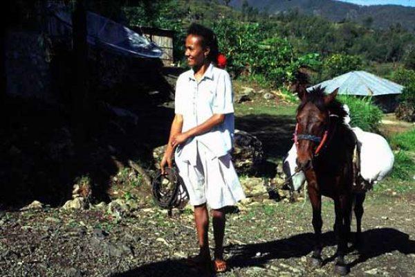 The Metu people of West Timor