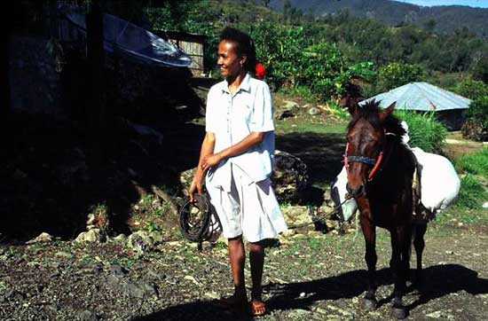 Nenas woman on her way to the market.