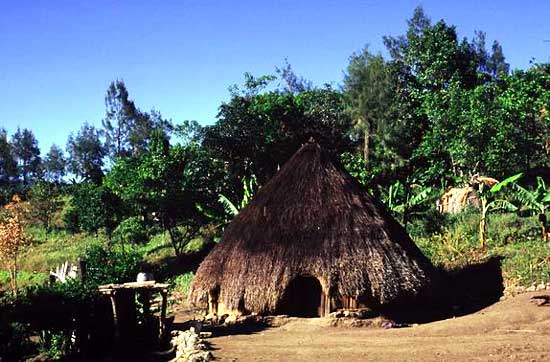 Nenas traditional house, lopo