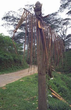 Tara Bandu, or Lobu or Kerok