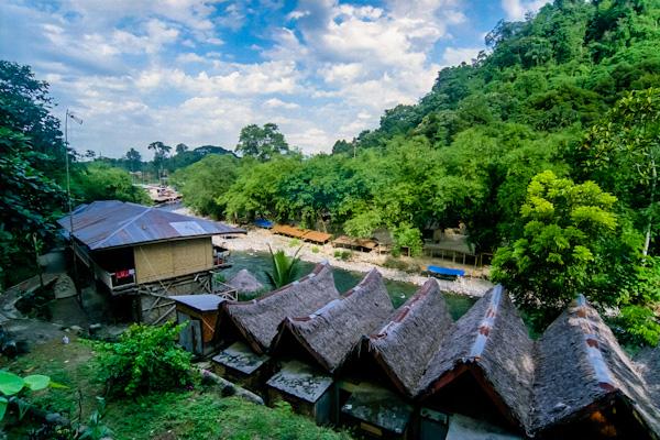 Going ape in Bukit Lawang