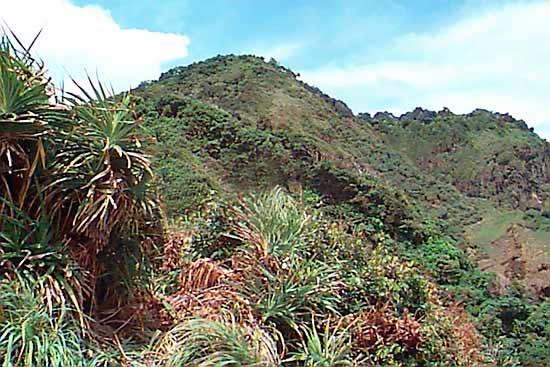 Ujung Kulon hilly landscape