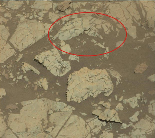Mastcam right camera with the area of interest in the red cirle.