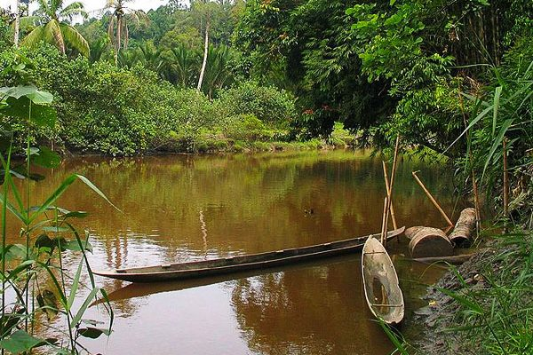 Shrimps, skirts and yellow submarines – The Siberut experience