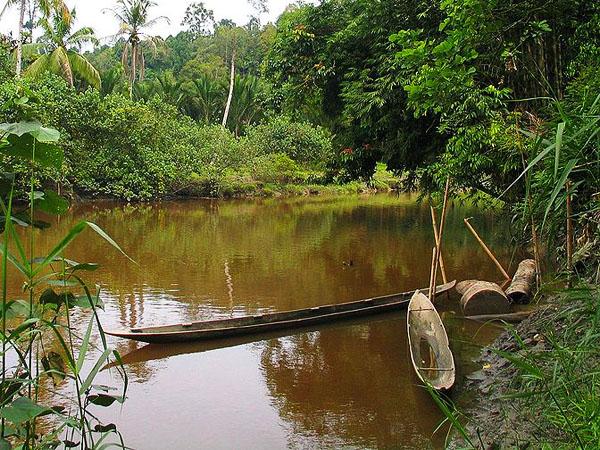 Siberut_island_river